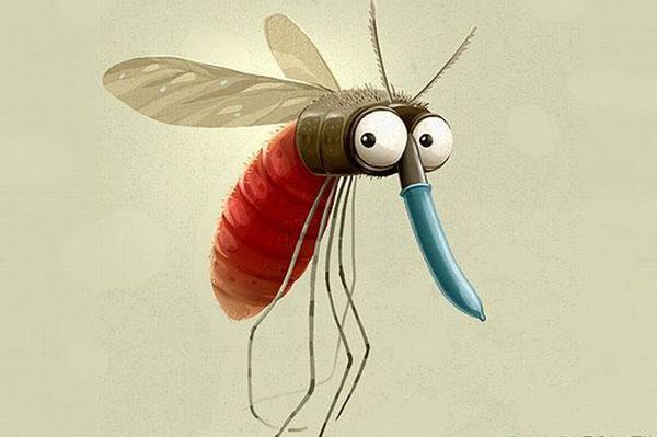 世界蚊子日 你知道吗蚊子才是最致命动物